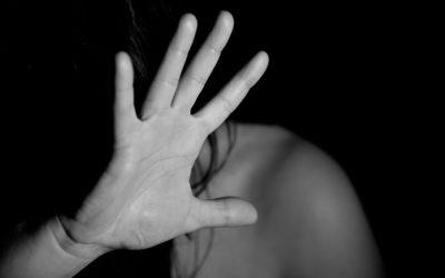 Motion pour la lutte contre la violence à l'égard des femmes et la violence domestique
